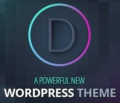 WordPress Divi Theme