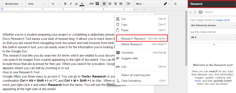 Google Docs Research Tool
