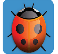 AppBugs Security Scan