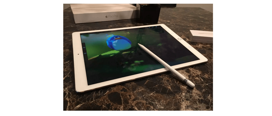 Stylus for iPad and Tablets