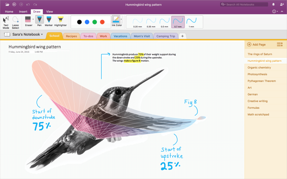 OneNote Import Tool